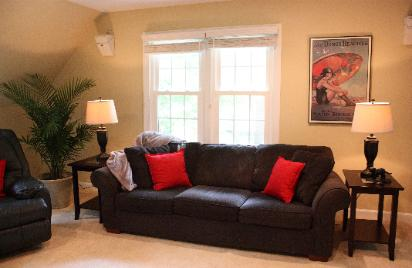 Cary NC bonus room with The Dunes Beaches print and large palm Red Chair Home Interiors